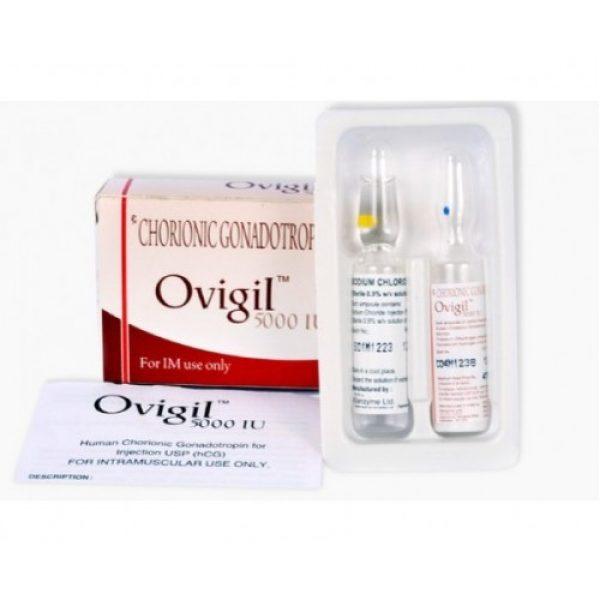 HCG Human Chorionic Gonadotropin